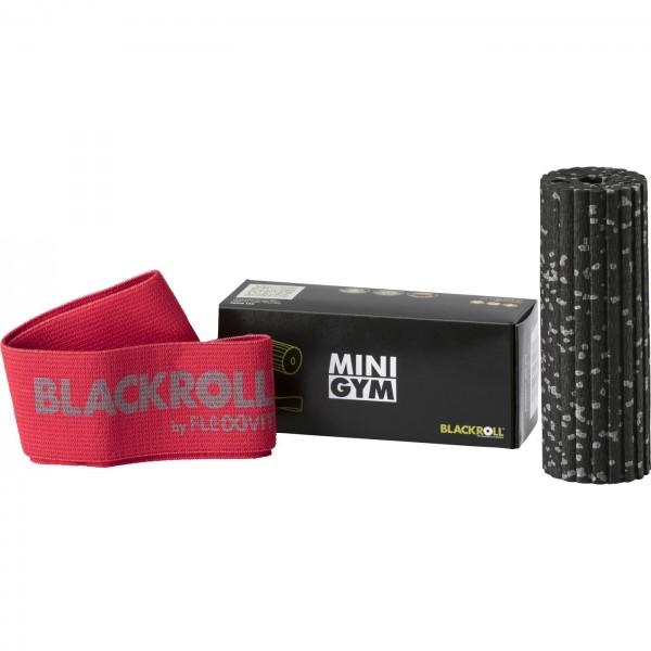 Blackroll Mini Gym