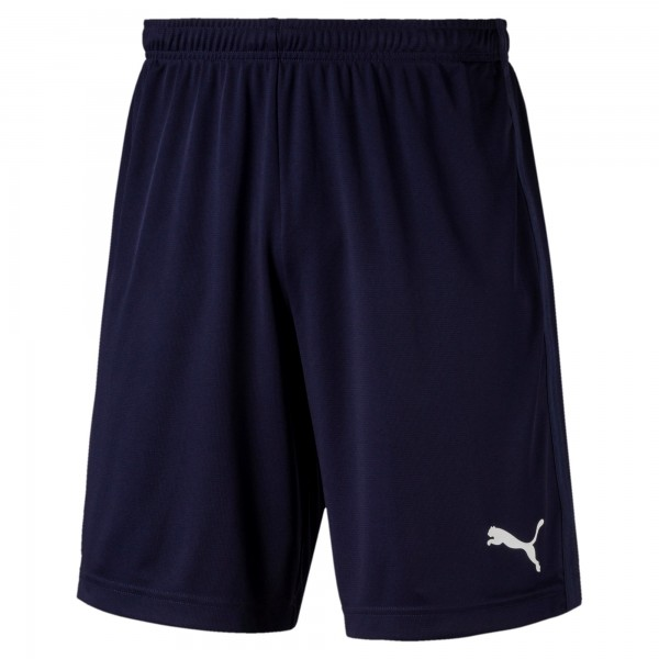 Puma LIGA Training Shorts Core