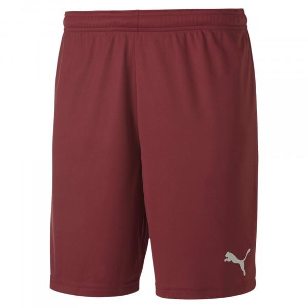 Puma teamGOAL 23 knit Shorts jr